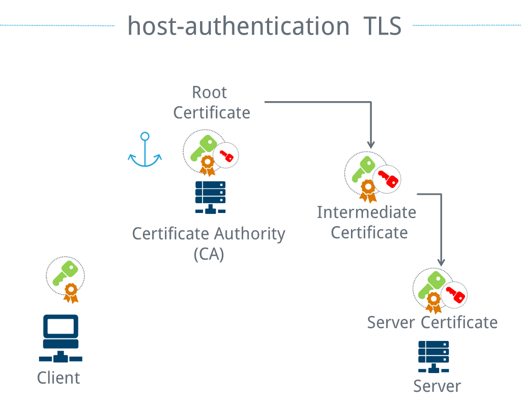 Trust anchors for TLS host authentication